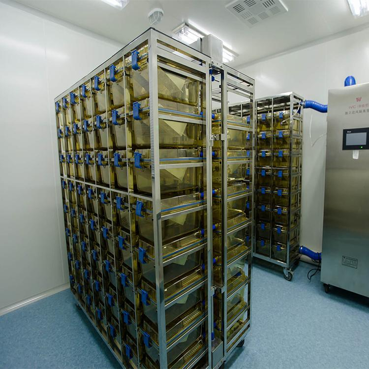 净化系统工程 承接动物房恒温恒湿 实验室装修 南京博泰