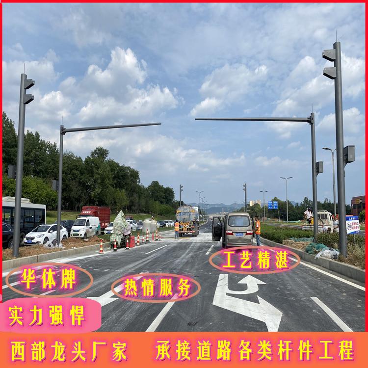 晋宁华体牌园林摄像监控杆 地铁轨道智能监控箱西部龙头厂家